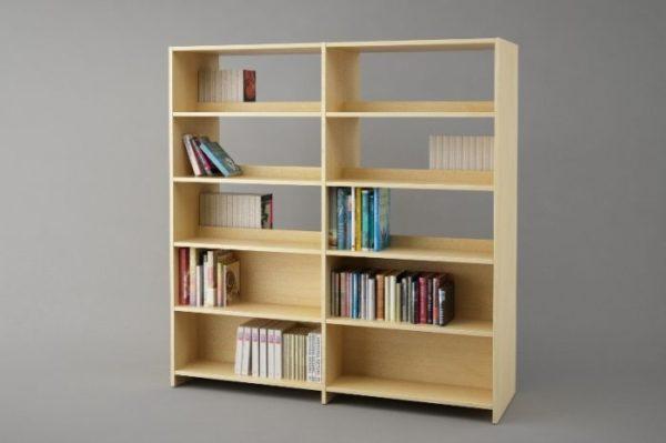 Raamatukoguriiul